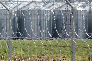 Kayman flat obstacles as a fence
