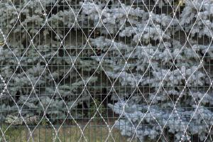 Welded panel fence and Kayman barbed mesh