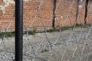 Забор из колючей сетки Кайман на старых столбах