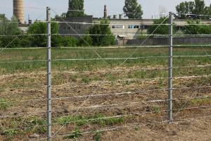 Забор из колючей проволоки Кайман